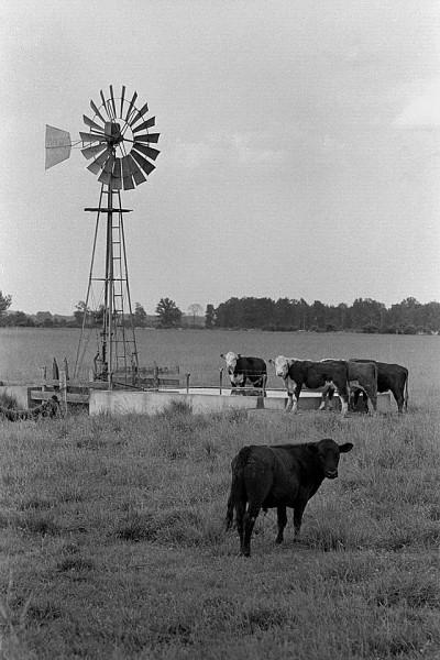 Allen Henderson windmill 06-06-1967