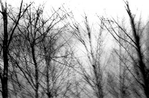 Rain Art 04-13-1967 18