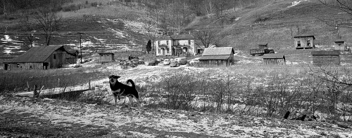 Scenics 01-11-1969
