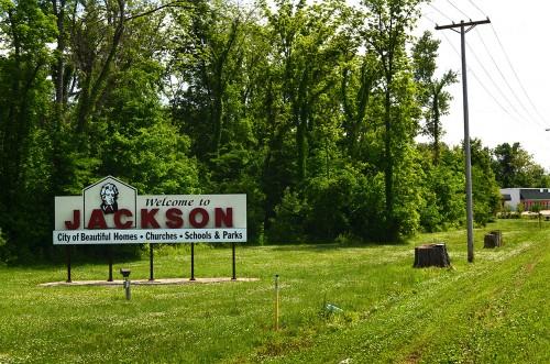 Hwy 61 stumps Jackson 05-23-2015_7097